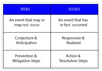 Risk and Issues